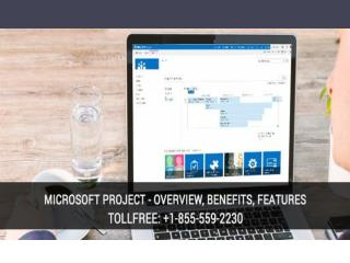 Know More about the Microsoft Project?