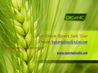 Career Dream Report Seek Your Dream/Tutorialoutletdotcom
