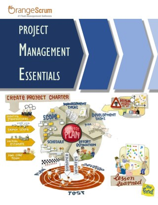 Essentials of Project management and project management Software for your Business