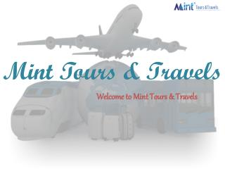 Mint tours & travels