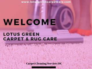 Carpet Cleaning DC