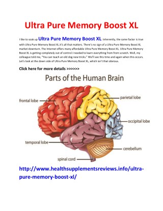 http://www.healthsupplementsreviews.info/ultra-pure-memory-boost-xl/