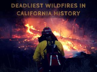 California's Deadliest Wildfires