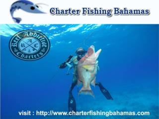 Bahamas Best Charter Fishing