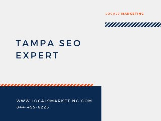 Tampa SEO Expert and Online Marketing Company | Local9 Marketing