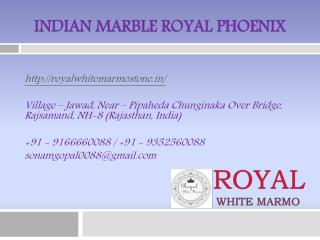 Indian Marble Royal Phoenix
