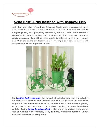 Send Best Lucky Bamboo with happySTEMS
