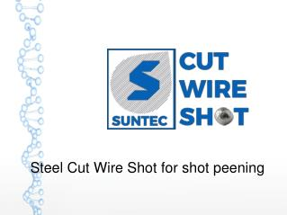 Steel Cut Wire Shot for shot peening