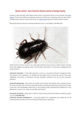 Roach control : Your Friend for Roach control in Orange County