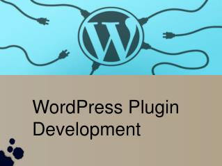 Reliable WordPress Plugin Services