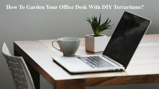 How To Garden Your Office Desk With DIY Terrariums?