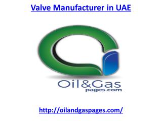 Get the best Valve manufacturer in UAE