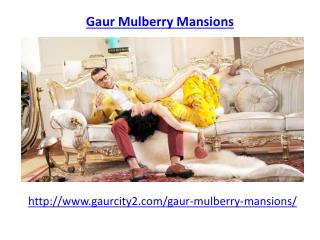Gaur Mulberry Mansions Noida Extension-8882127127