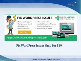 Fix WordPress Issues only for $19