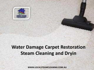 Water Damage Carpet Restoration, Steam Cleaning and Dryin