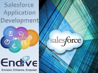 Get Salesforce Implementation Partner Services & their Knowledge