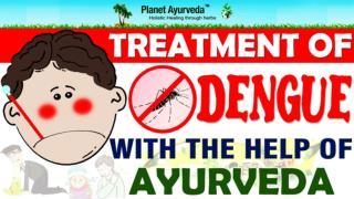 Ayurvedic Medicines & Foods Advice For Dengue Patients