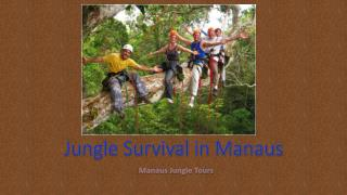 Jungle Survival in Manaus with Manaus Jungle Tours in Brazil