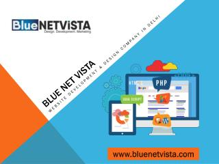 Website Development Services | Website Design Company – Blue Net Vista