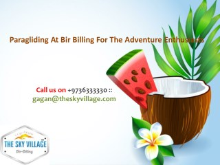 Paragliding At Bir Billing For The Adventure Enthusiasts