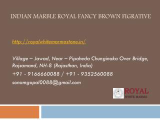 Indian Marble Royal Fancy Brown Figrative