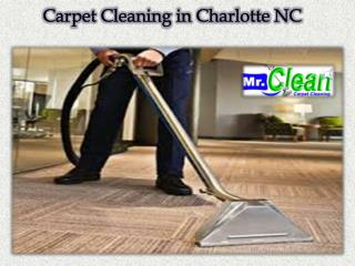 Carpet Cleaning in Charlotte NC
