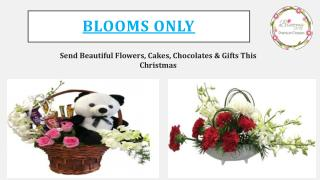 Send Beautiful Flowers, Cakes, Chocolates & Gifts This Christmas to Pune  – Blooms Only