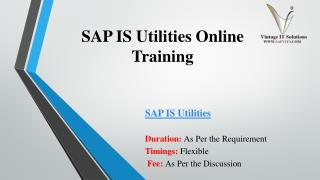SAP IS Utilities Training Material PPT