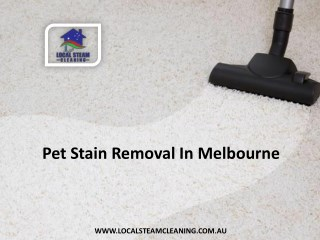Pet Stain Removal In Melbourne