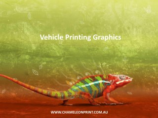 Vehicle Printing Graphics - Chameleon Print Group