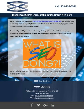 Experienced Search Engine Optimization Firm in New York