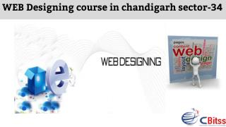 WEB Designing course in chandigarh sector-34