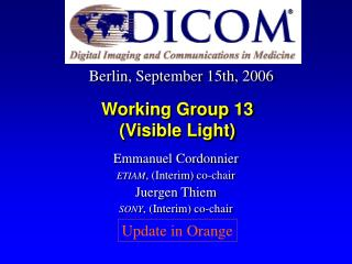 Working Group 13 (Visible Light)