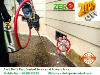 Avail Delhi Pest Control Services at Lowest Price