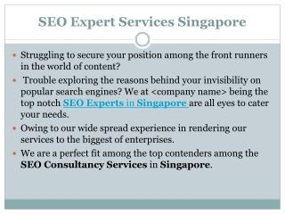 SEO Expert Services Singapore Best SEO Company in Singapore: seoexpertvvv