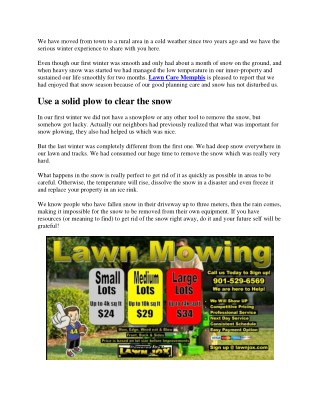 Top Winter Lawn Care Tips
