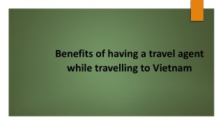 Benefits of having a travel agent while travelling to Vietnam