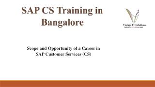 SAP Customer Service PPT