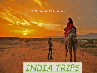 INDIA TRIPS | TRIPS TO INDIA