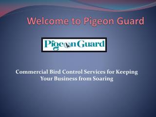 Bird Netting Suppliers By pigeonguard.com