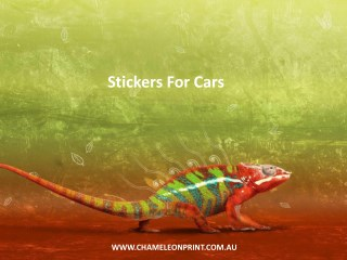 Stickers For Cars - Chameleon Print Group