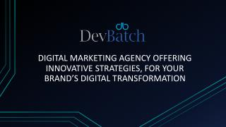 Digital Marketing Agency - DevBatch