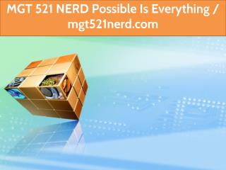 MGT 521 NERD Possible Is Everything / mgt521nerd.com