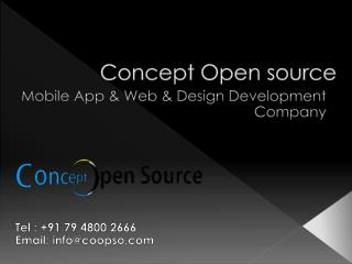Custom Word press Web Development