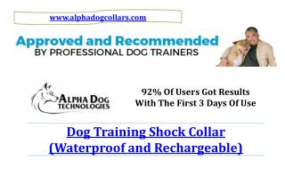 Dog Training Shock Collar (Waterproof and Rechargeable)