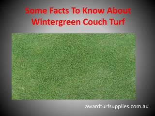 Some Facts To Know About Wintergreen Couch Turf