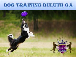 Dog training Duluth GA