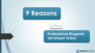 9 Reasons to hire a Professional Magento Developer Today