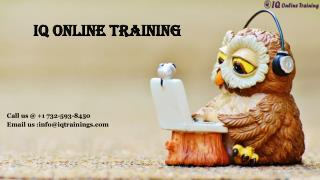 Be trained to Sharepoint online courses step by step|IQ online training