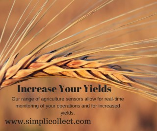 Increase Your Yields